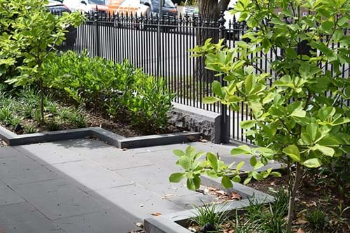 Landscape Construction Gallery 15