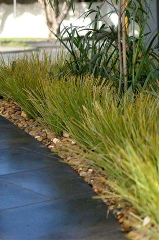 Landscape Construction Gallery 20