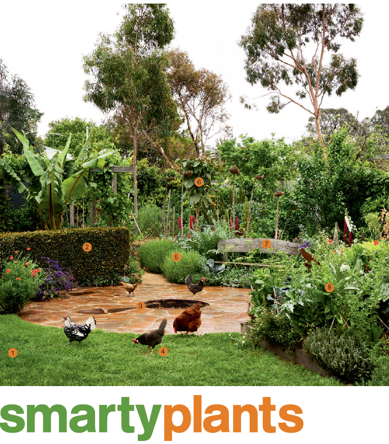 Media - Horticulture and Landscaping | Van Leeuwen Green