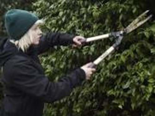 Landscaping garden maintenance garden restoration in for Garden maintenance van